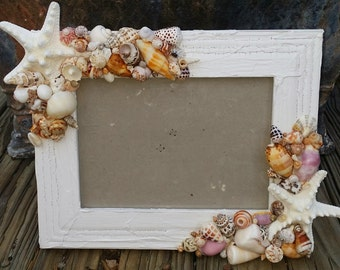 Coastal Cottage Chic Seashell & Starfish Frame/Smooth Beach Shells/ Rustic Crackle Chippy Style/ Choice of Paint Color/ Nautical Home Decor