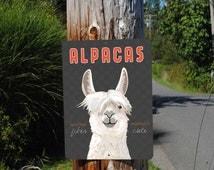 "Alpacas: Luxurious Fiber & Undeniably Cute Sign 9"" x 12"" (gray)"