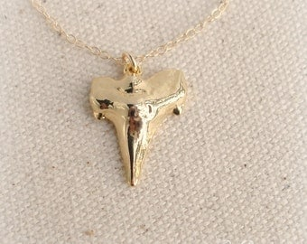 Gold Shark Tooth Necklace / Large Tooth / 14k Gold Filled chain /Gold Vermeil Shark tooth,Sterling Silver dipped in 18k Gold, Beach Necklace