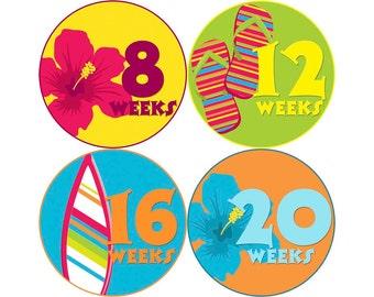 Pregnancy Stickers, Pregnancy Announcement, Weekly Stickers, Belly Stickers, Pregnancy Photo Prop, Belly Bump Stickers, Hawaii (G038-P)
