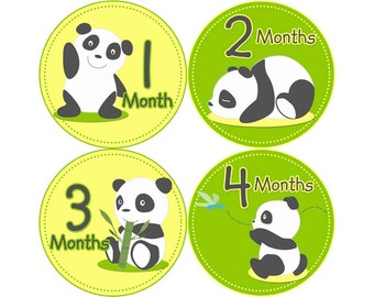 Monthly Baby Stickers, First Year Photo Props, Baby Month Stickers, Baby Announcement, Monthly Photos, Baby Gift, Panda (N022)