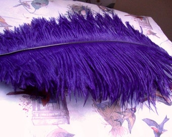 1920's Antique Purple Ostrich Feather Antique Millinery Feather for Hat Making Plume Victorian Costume Antique Hat 133 380