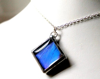 Blue Butterfly Wing Necklace, Square Domed Pendant, Real Butterfly Jewelry