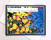 Bloom Where You Are Planted - Handmade Colorful Flower Photo Print Greeting Card - Encouragement, Motivation, Thinking of You