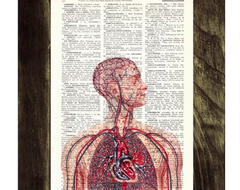 Anatomy book print  - Human Heart and arteries Circulatory System - Dictionary Book Page Print - Anatomy Art on Upcycled Book Page BPSK050