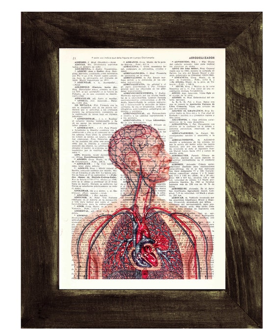 Spring Sale Anatomy book print  - Human Heart and arteries Circulatory System - Dictionary Book Page Print Art on Book Page BPSK050