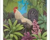 White Rooster, Large Giclee Print
