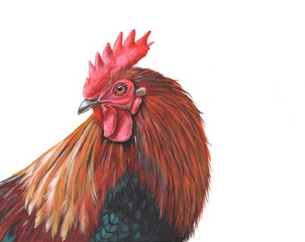 Rooster painting - bird art - print of watercolor painting A4 size