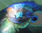 Fascinator - Peacock Feathers - Cruelty Free - Feathers - Turquoise