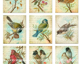 Digital Clipart, Vintage Birds--songbirds, lovebirds, thrush, finch, chickadee, printables--Digital Collage Sheet (8.5 by 11 inches) 196