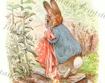 BENJAMIN BUNNY High resolution Instant Download Antique reproduction file 1904