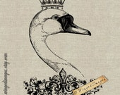 Royal Swan. Instant Download Digital Image No.60 Iron-On Transfer to Fabric (burlap, linen) Paper Prints (cards, tags)