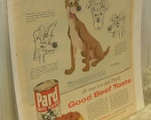 Lady and the Tramp Pard Dog Food Ad from Better Homes and Garden 1955 Featuring Tramp