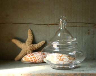 Apothecary jar,  vintage apothecary jar, Halloween candy jar