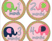 Monthly Baby Girl Stickers, Milestone Stickers, Month to Month Stickers, Photo Prop Stickers, Boy or Girl Baby Stickers