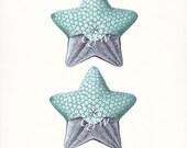 Ernst Haeckel Coastal Decor Fantasy Sea Life Art Print, Natural History Nautical Wall Decor Two Sea Stars 8x10 aqua