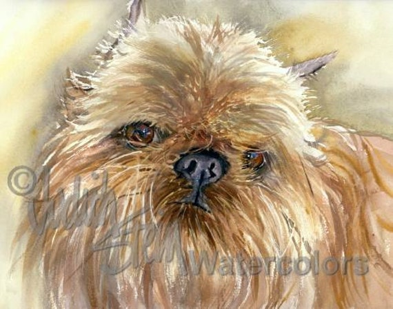 "Brussels Griffon, Long Haired, AKC Toy, Pet Portrait Dog Art Watercolor Painting Print Picture, Wall Art, Home Decor, ""Brussels Griffon"""