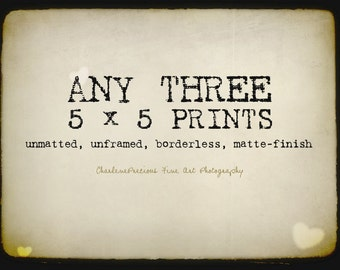 """10% OFF YOUR ORDER of any three 5 x 5"""" prints!"""