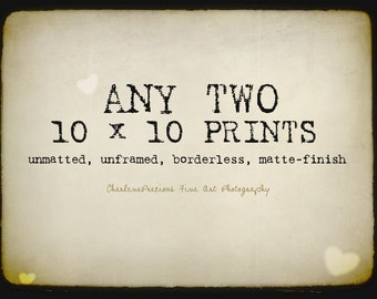 """10% OFF YOUR ORDER of any two 10 x 10"""" prints!"""