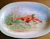 Vintage  Serving Platter - Dresden Porcelain - Natural Scene Two Pheasants