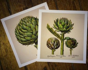 "ARTICHOKES set of 2 glorious green vegetable prints -7.5 x 8.125"""