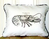 "shabby chic, feed sack, french country, vintage lobster graphic with toile welting ORGANIC cotton 12"" x 16"" pillow sham."