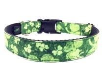 Irish Dog Collar for St. Patrick's Day - Shamrock