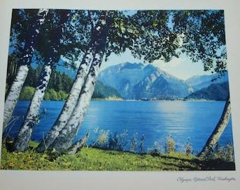 "Vintage Print, 12""x15"", Olympic National Park, Washington; from 1946"