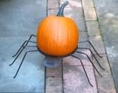 Spider Pumpkin or Mum stand