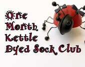 One Month Kettle Dyed Sock Club:  March 2016