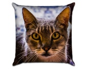 """Missy's Cat 5 - Original Photo Sofa Throw Pillow Envelope Cover for 18"""" inserts"""