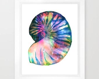 SEASHELL #1  Art Print, beach, Ocean by SchatziBrown