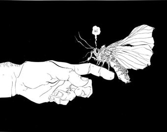 Illustration Print of a moth sitting on someone's hand.