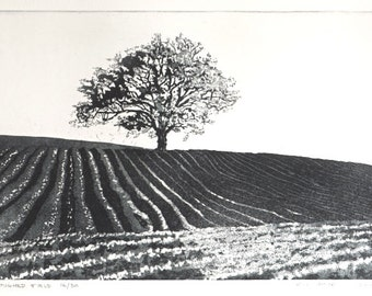 Original Etching - 'Ploughed Field' Etching - Oak Tree in Field - Original Hand Pulled Black & White Print -  William White - Free Shipping