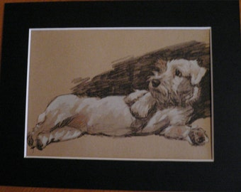 Sealyham relaxing Vintage mounted 1935 Cecil Aldin Sealyham terrier dog plate print Unique Christmas Thanksgiving Birthday dog lover gift
