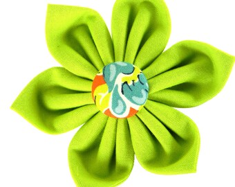 Lime Green Dog Collar Flower: April's Flowers