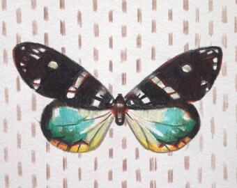 Butterfly Dot-- Fine Art Print