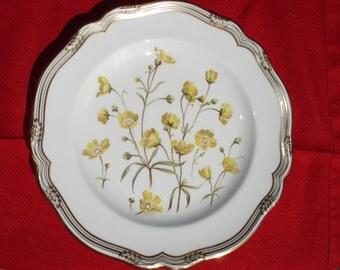 "Spode Wildflower Series, #2 Buttercup,  11"" Plate, Rare"