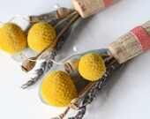 Rustic Craspedia Boutonniere - Gold Yellow Coral Wedding