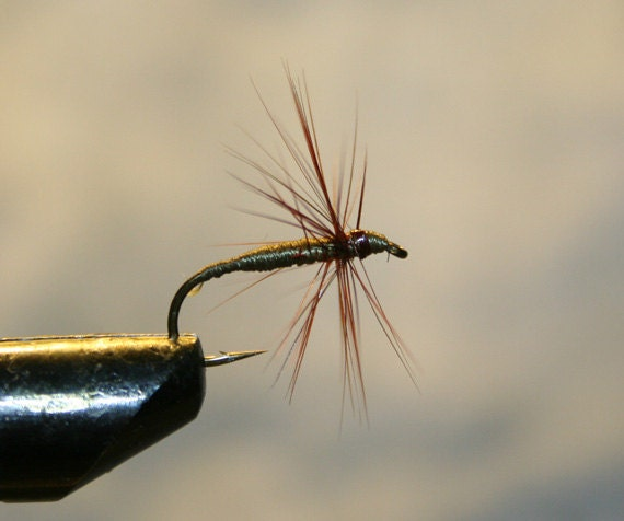 Made in michigan fishing flies olive brown spider on number for Fishing spider michigan