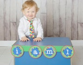very hungry caterpillar birthday high chair banner/photo prop