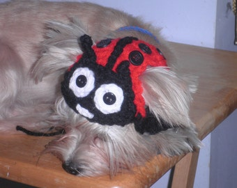 Crocheted Ladybug Cat or Dog Hat Pet Ladybug Hat Ladybug Costume for Halloween