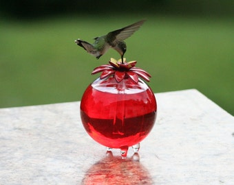 Hummingbird feeder (546)