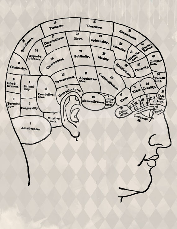items similar to vintage human brain map diagram digital ... brain mapping diagram #11