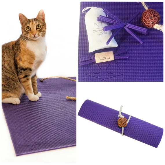Purple Yoga Cat Mat Plus Toys and Catnip