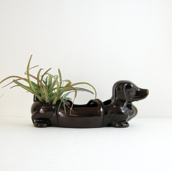 Vintage Ceramic Dachshund Planter Chocolate Brown By Lastcentury