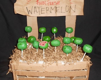 WATERMELON cake pops Summer BBQ party 2 dozen