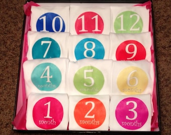 Monthly One-Piece Bodysuits (set of 12) - Bright colors