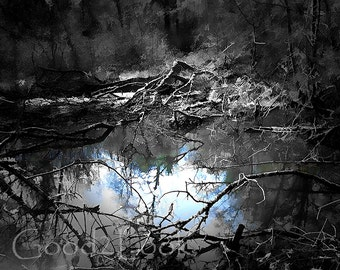 Mysterious Pond in the forest in the French Dordogne