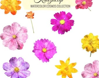 Watercolor Cosmos Collection - Commercial and Personal Use